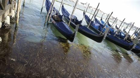 Βενετία: Οι γονδολιέρηδες έγιναν δύτες για να καθαρίσουν το βυθό της πόλης