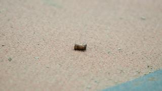 Κρήτη: Αδέσποτη σφαίρα χτύπησε αυτοκίνητο στο οποίο επέβαινε οικογένεια