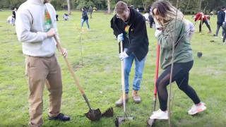 Mr Beast και άλλοι διάσημοι YouTubers φυτεύουν 20 εκατομμύρια δέντρα