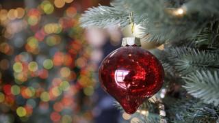 Φωταγωγήθηκε το πρώτο χριστουγεννιάτικο δέντρο στην Ελλάδα για φέτος