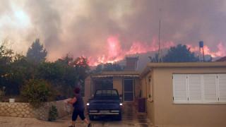 Πυρκαγιές Ζάκυνθος: 7.500 στρέμματα έγιναν στάχτη φέτος
