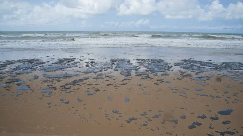 Βραζιλία - «Τα χειρότερα έπονται»: Η πετρελαιοκηλίδα έφτασε στις ακτές του Ρίο ντε Τζανέιρο
