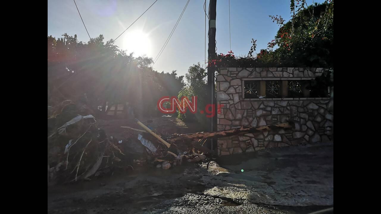 https://cdn.cnngreece.gr/media/news/2019/11/25/198491/photos/snapshot/76717412_511516966111249_8070374412542541824_n.jpg