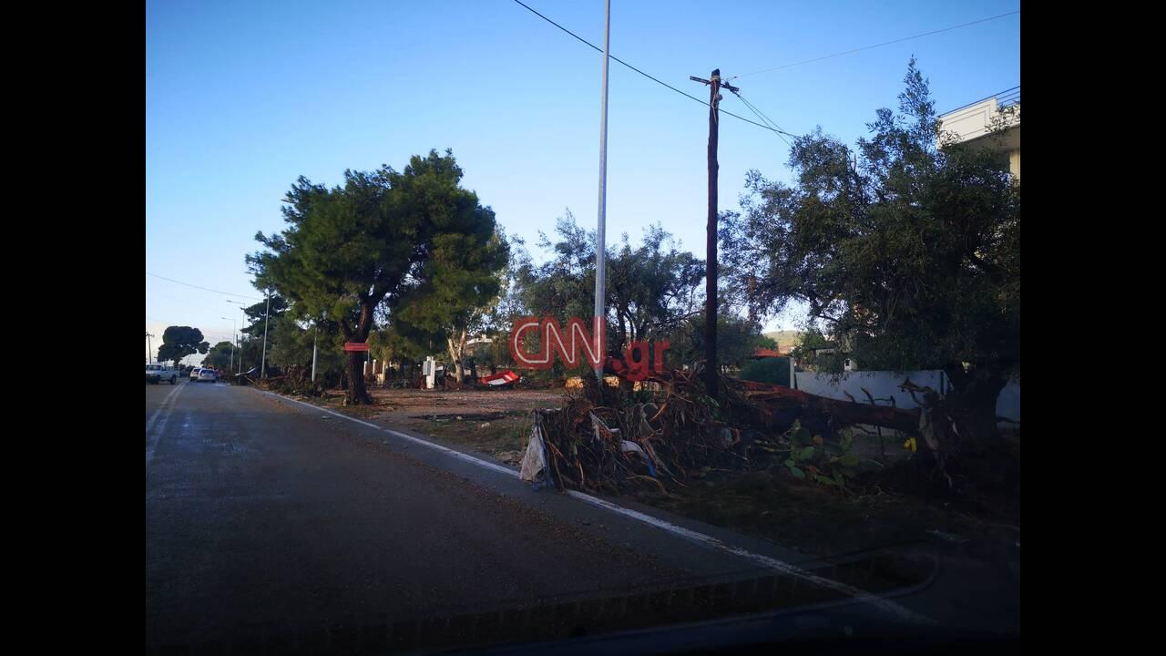 https://cdn.cnngreece.gr/media/news/2019/11/25/198491/photos/snapshot/78480532_2535219606574261_4907036587067441152_n.jpg