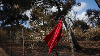 Άρειος Πάγος: Μήνυση για ανθρωποκτονία από τα παιδιά δύο γυναικών που έχασαν τη ζωή τους στο Μάτι