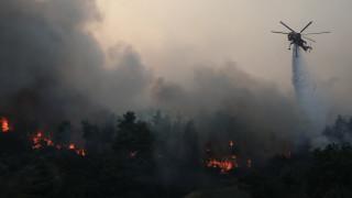 Δυτική Ελλάδα: Περισσότερες φέτος οι φωτιές αλλά λιγότερες οι καμένες εκτάσεις