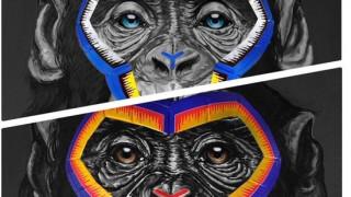 «Εξοργιστική»: Αντιρατσιστική αφίσα με μαϊμούδες έβαλε «φωτιά» στον ποδοσφαιρικό κόσμο της Ιταλίας