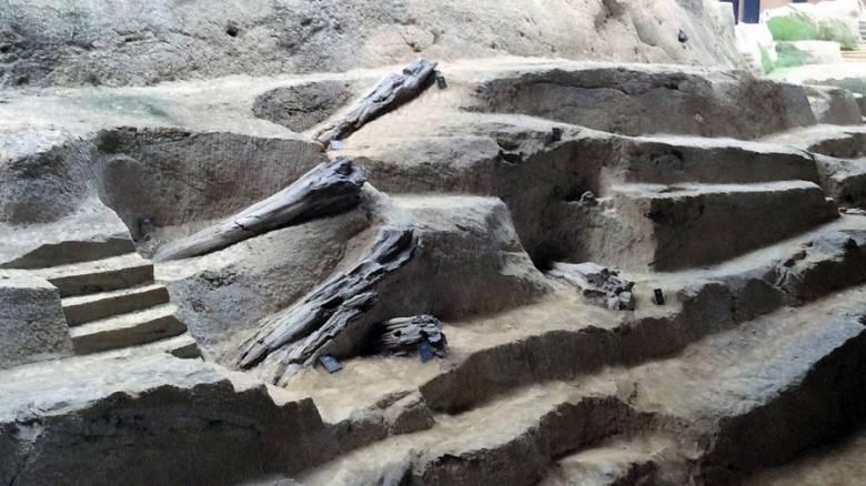 Μυτιλήνη: Μνημόνια συνεργασίας με κινεζική πόλη για το Απολιθωμένο Δάσος
