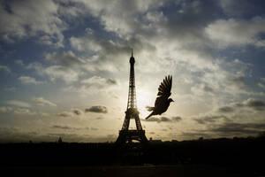 5 - Πύργος του Άιφελ, Παρίσι:  Κατασκευάστηκε το 1889 από τον μηχανικό Γουστάβο Άιφελ και σήμερα αποτελεί ένα από τα γνωστότερα κτίρια στον κόσμο. Με ύψος 324 μέτρα, έχει βάρος 10.000 τόνους και η κατασκευή του είναι τόσο σταθερή, ώστε παρεκκλίνει μόλις
