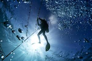 12 Φεβρουαρίου, Τζαμάικα. Ο δύτης Λένφορντ ΝταΚόστα καθαρίζει από τη μόλυνση κοράλλια στο υποθαλάσσιο καταφύγιο Ορακαμπέσα στη Τζαμάικα.