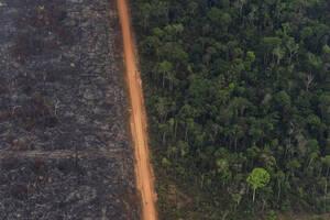 27 Αυγούστου, Βραζιλία. Το τροπικό δάσος χωρίζεται με μια νοητή γραμμή από το καμένο έδαφος, στη Βραζιλία. Οι φωτιές που κατέκαψαν τον Αμαζόνιο συνέβαλαν στην παγκόσμια ανησυχία για την υπερθέρμανση του πλανήτη.