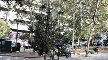 Εικόνες από το καμένο δέντρο στα Εξάρχεια
