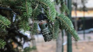 Χριστουγεννιάτικο δέντρο στα Εξάρχεια: Δεν το κάψανε ξανά, το «στολίσανε»