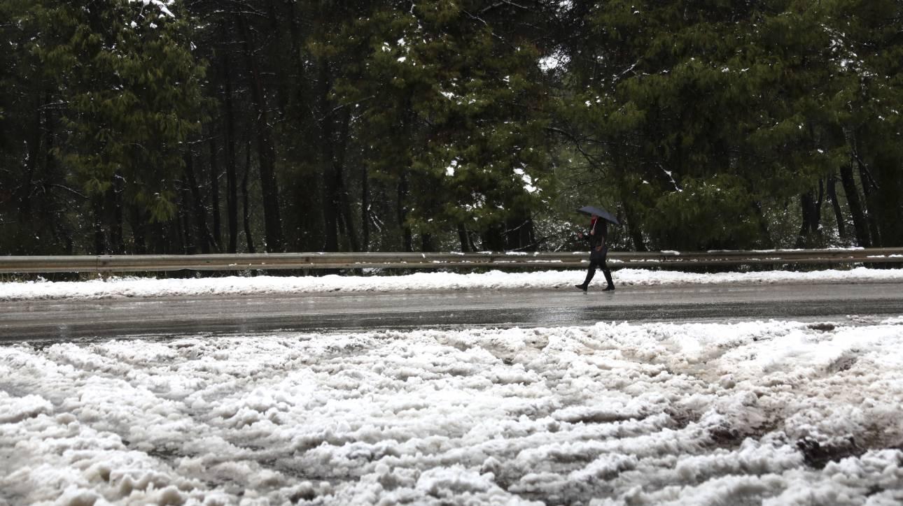 «Ζηνοβία»: Σε επιφυλακή ο κρατικός μηχανισμός - Δεύτερο κύμα χιονιά «χτυπά» τη χώρα