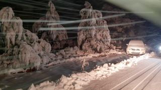 «Ζηνοβία»: Προβλήματα σε Αρκαδία και Κορινθία λόγω των χιονοπτώσεων