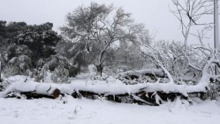 Καιρός - «Ζηνοβία»: Έντονα φαινόμενα και τη Δευτέρα - Ποιες περιοχές θα επηρεαστούν