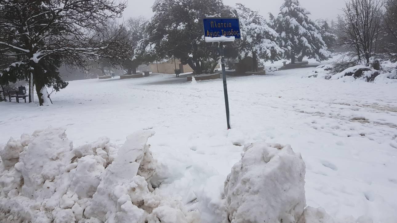 Καιρός: Βροχές, καταιγίδες και χιόνια - Πού θα «χτυπήσουν» τα έντονα φαινόμενα