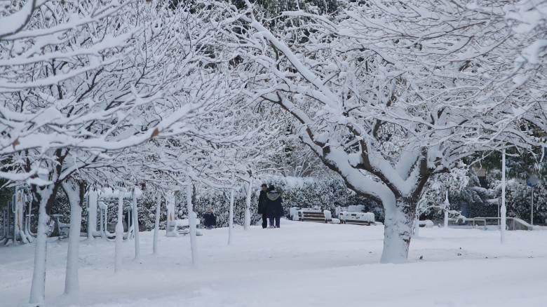 Καιρός: Νέο ψυχρό μέτωπο από την Κυριακή – Ποιες περιοχές θα «ντυθούν» στα λευκά