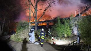 Γερμανία: Ιπτάμενα φαναράκια η αιτία της φωτιάς στον ζωολογικό κήπο όπου κάηκαν δεκάδες ζώα