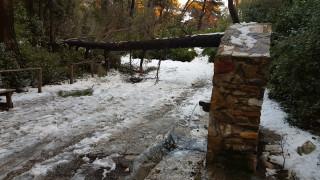 Καιρός: Βροχές, χιόνια και πτώση της θερμοκρασίας σήμερα