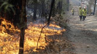 Μήνυμα της βασίλισσας Ελισάβετ στην Αυστραλία που πλήγεται από τις πυρκαγιές