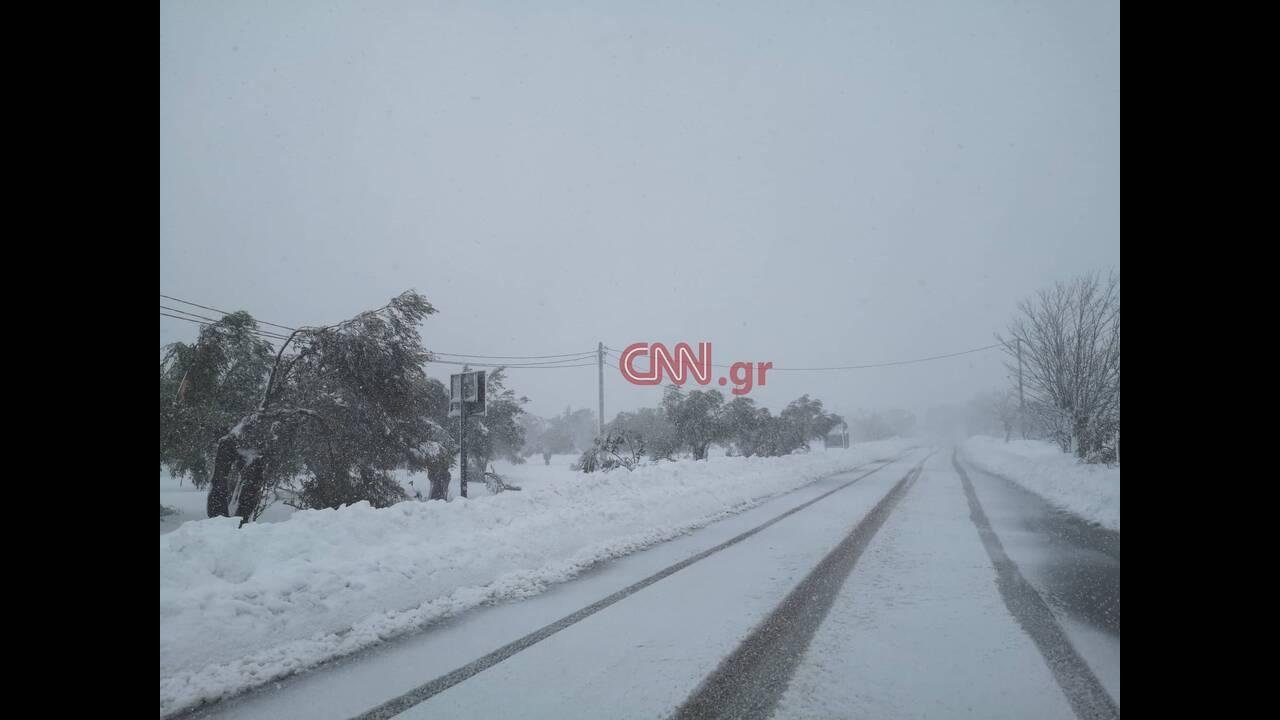 https://cdn.cnngreece.gr/media/news/2020/01/06/203133/photos/snapshot/1-3.jpg