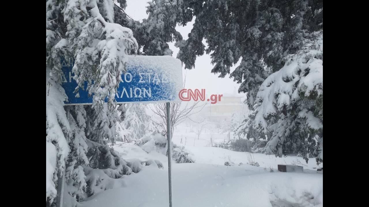 https://cdn.cnngreece.gr/media/news/2020/01/07/203197/photos/snapshot/1-8.jpg