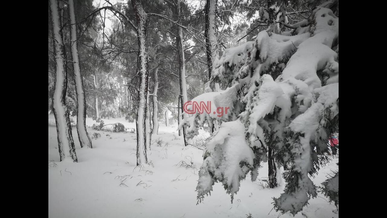 https://cdn.cnngreece.gr/media/news/2020/01/07/203197/photos/snapshot/1-9.jpg