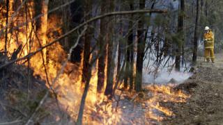 Αυστραλία: Νεκρός ακόμη ένας πυροσβέστης – Να «φύγουν γρήγορα» οι κάτοικοι ζητούν οι Αρχές