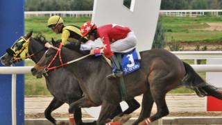 Markopoulo Park: Σημαντικά κέρδη για 15 νικητές του ΣΚΟΡ 6 στην 1η ιπποδρομιακή συγκέντρωση του 2020