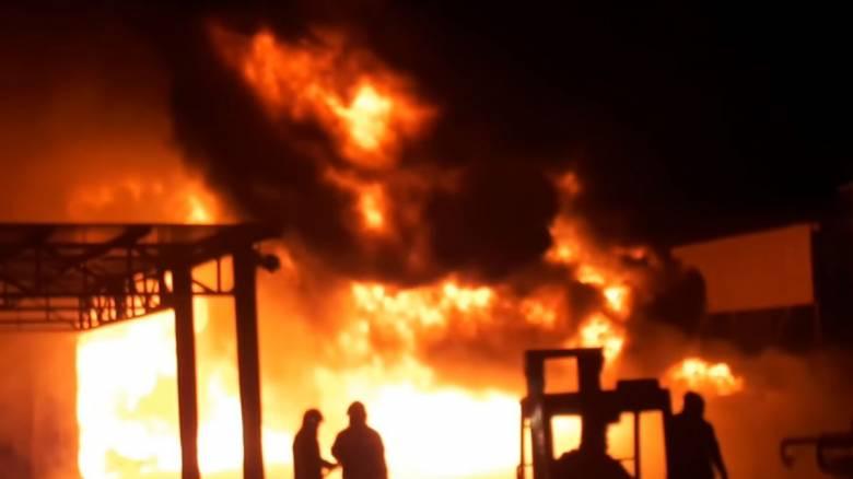 Θεσσαλονίκη: Υπό έλεγχο η φωτιά στη Σίνδο