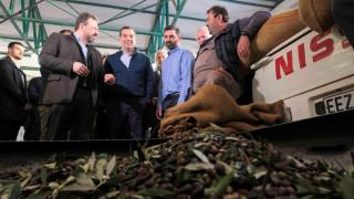Τσίπρας: Η κυβέρνηση να δώσει λύση στο πρόβλημα της τιμής του ελαιόλαδου