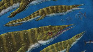 Θαλάσσιο ερπετό... 200 εκατομμυρίων ετών: Το παράξενο πλάσμα που ανακαλύφθηκε στην Αλάσκα