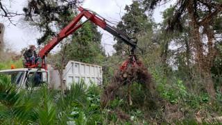 Ο Δήμος Αθηναίων βάζει μπρος τον Βοτανικό Κήπο του ΕΚΠΑ