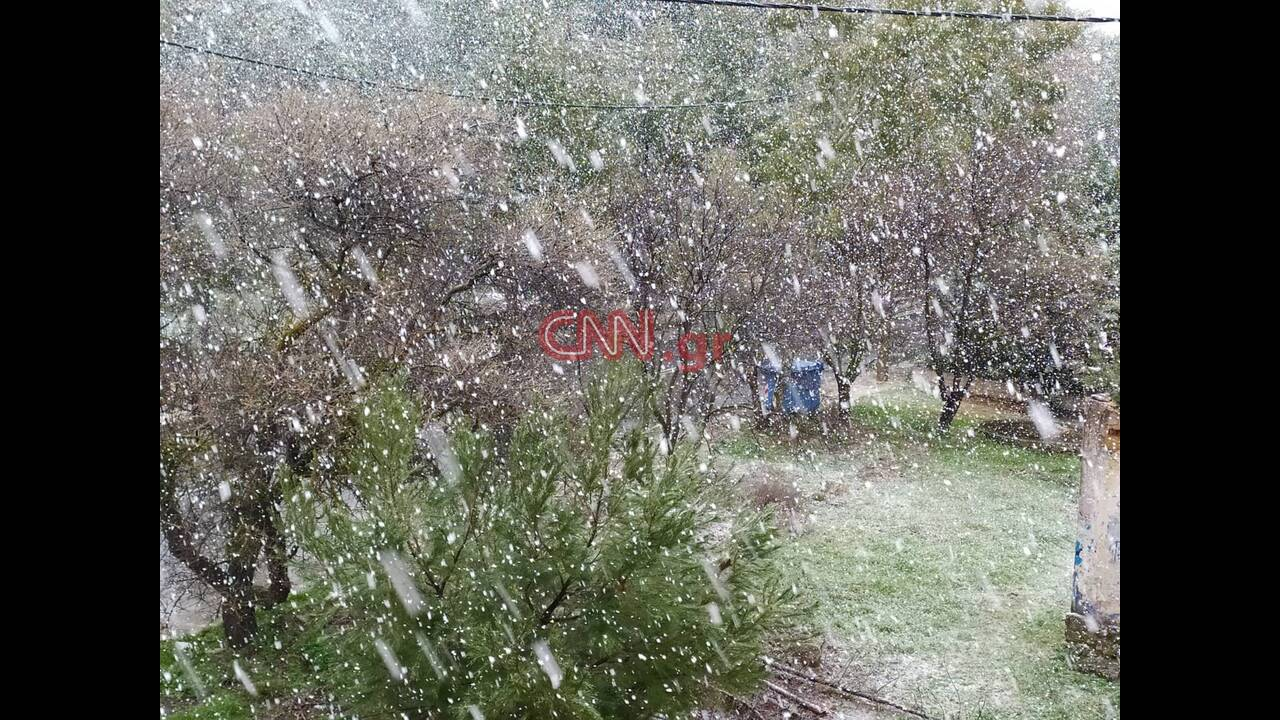 https://cdn.cnngreece.gr/media/news/2020/02/06/206637/photos/snapshot/84988514_2710273809068498_2642212053128839168_n.jpg