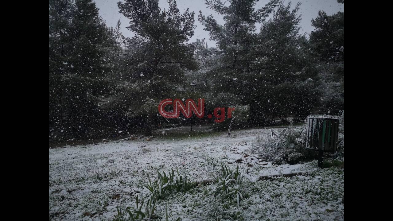 https://cdn.cnngreece.gr/media/news/2020/02/06/206637/photos/snapshot/x3.jpg