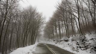 Κακοκαιρία: Το «έστρωσε» στο Πήλιο – Ψύχος και χιονόνερο στον Βόλο