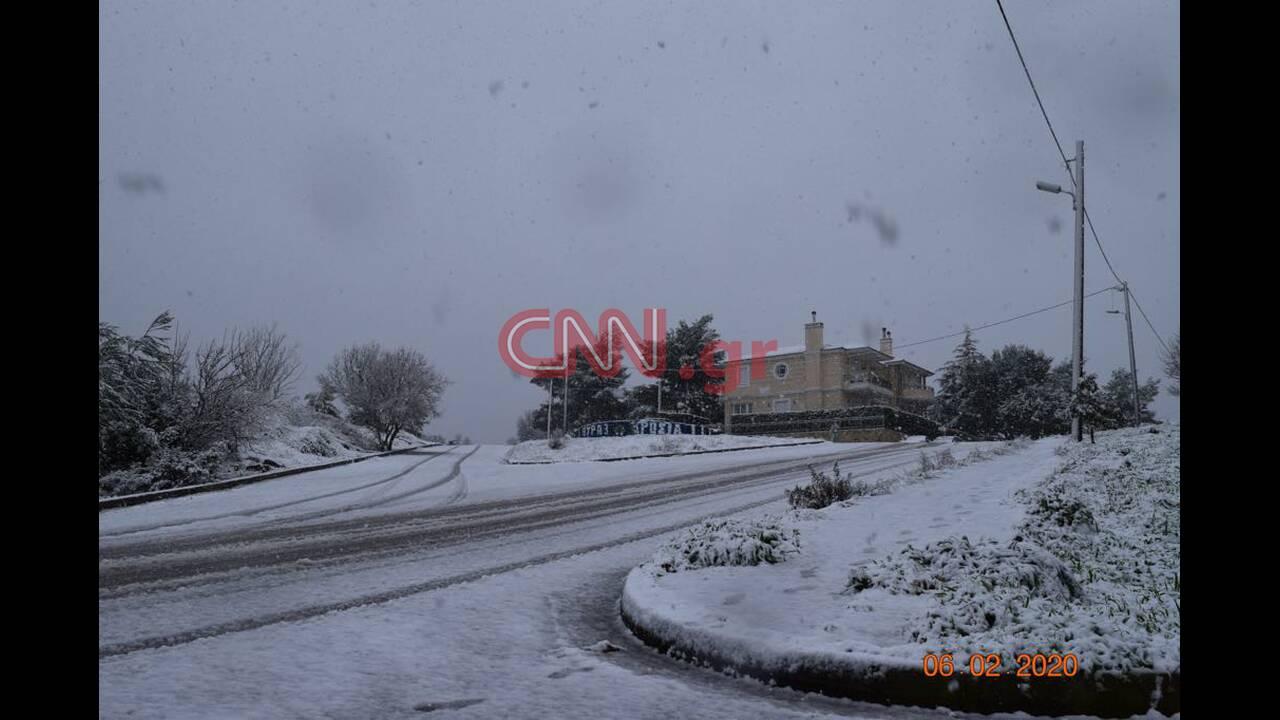 https://cdn.cnngreece.gr/media/news/2020/02/06/206660/photos/snapshot/dr1.jpg