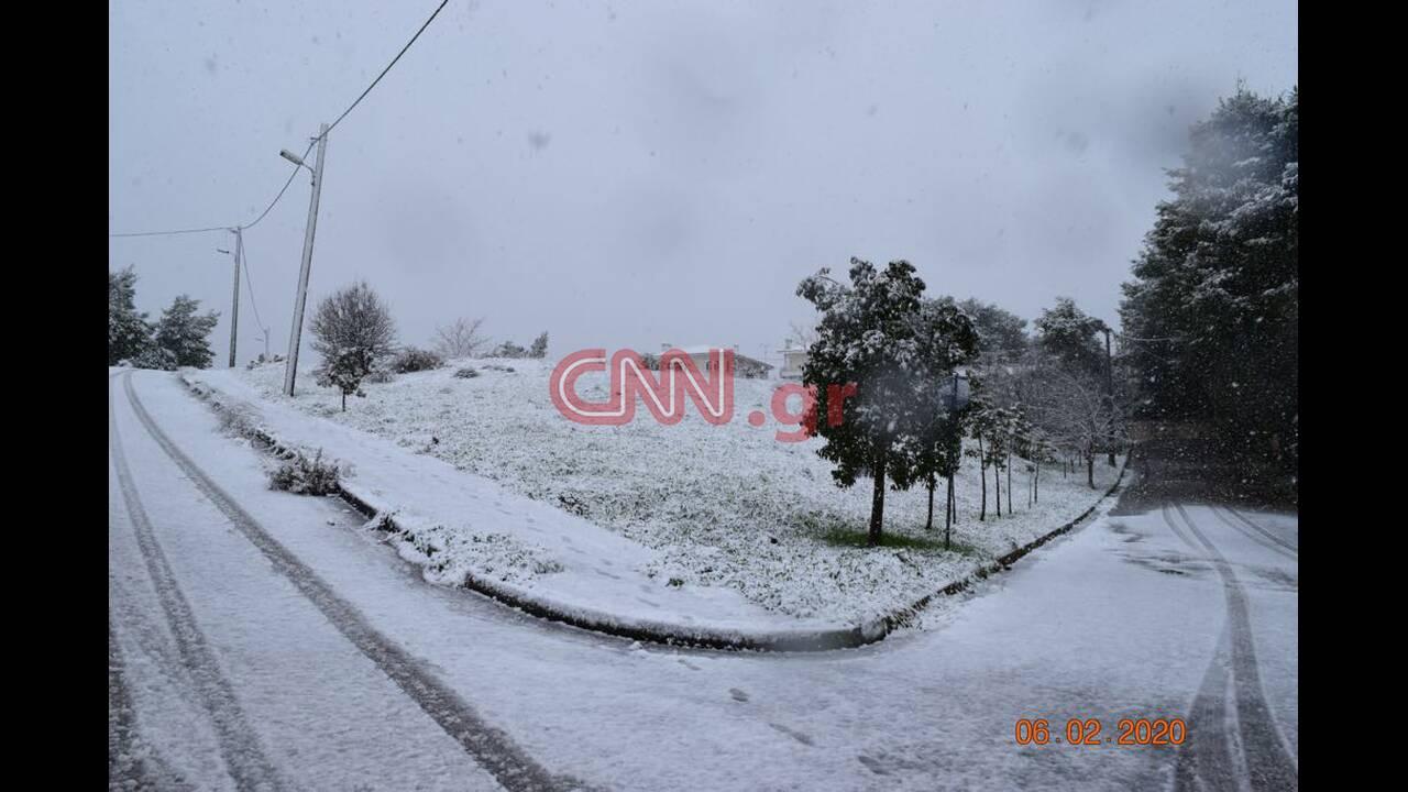 https://cdn.cnngreece.gr/media/news/2020/02/06/206660/photos/snapshot/dr4.jpg