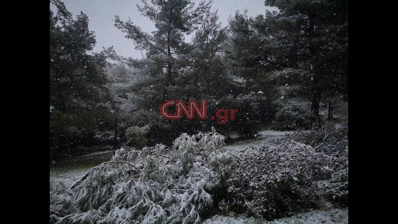 https://cdn.cnngreece.gr/media/news/2020/02/06/206660/photos/snapshot/x7.jpg