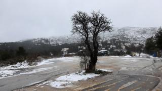 Καιρός: Χιόνια και μικρή άνοδος της θερμοκρασίας σήμερα