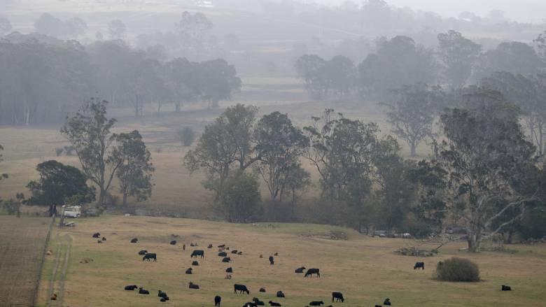 Αυστραλία: Βροχές… εξ ουρανού σβήνουν δεκάδες φωτιές
