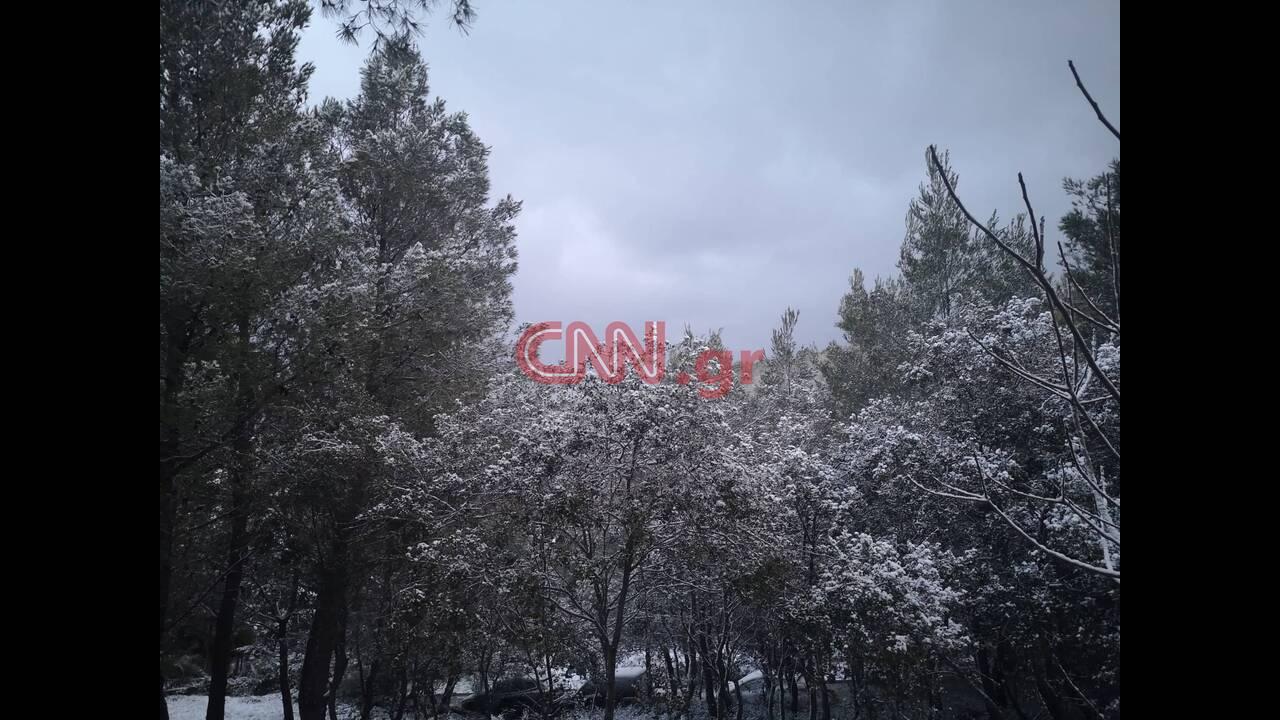 https://cdn.cnngreece.gr/media/news/2020/02/07/206841/photos/snapshot/85054888_2346162765644663_3722153825629372416_n.jpg