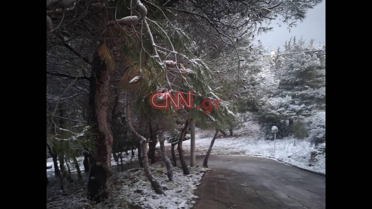 https://cdn.cnngreece.gr/media/news/2020/02/07/206841/photos/snapshot/85087529_1037132269954125_7447423731636371456_n.jpg