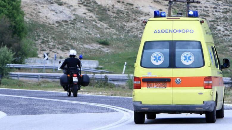 Κρήτη: 13χρονος δέχθηκε επίθεση από σκύλο