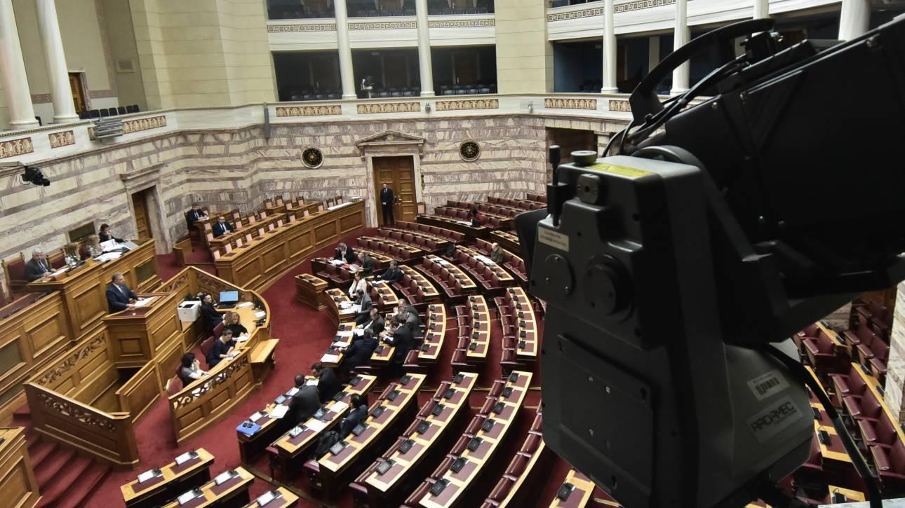 Βουλή: Υπερψηφίστηκε η τροπολογία για την ΛΑΡΚΟ