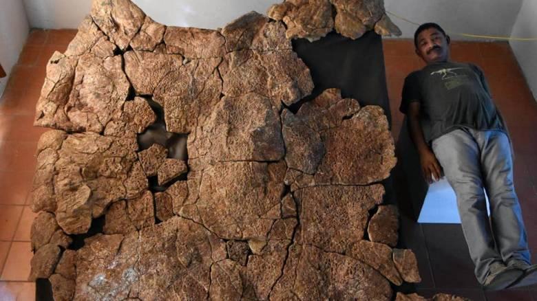 Stupendemys: Η γιγαντιαία προϊστορική χελώνα αποκαλύπτεται