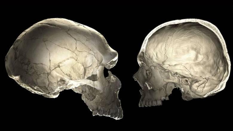 Μυστηριώδης αρχαίος πληθυσμός «φάντασμα» ανακαλύφθηκε στη δυτική Αφρική