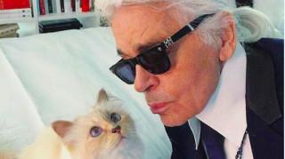 Καρλ Λάγκερφελντ: Πόσα άφησε τελικά στη γάτα του;