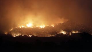 Αυστραλία: Οι πυρκαγιές κατέστρεψαν το ένα πέμπτο των δασών της